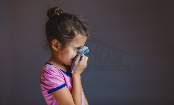 raffreddore-da-muffa